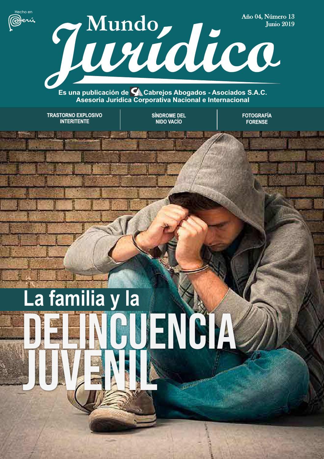 Artículos de revistas sobre lesiones cerebrales traumáticas leves