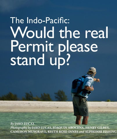 Page 38 of Would the Real Permit Please Stand up