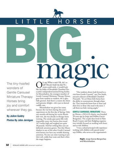Page 34 of Little Horses, Big Magic