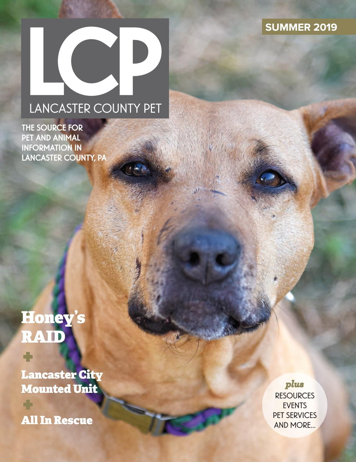 Lancaster County Pet Summer 2019 by Lancaster County Pet - issuu