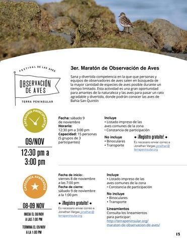 Page 13 of 3er. Maratón de Observación de Aves
