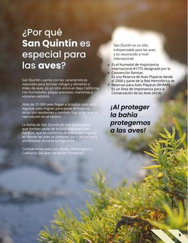 Page 5 of ¿Por qué San Quintín es especial para las aves?