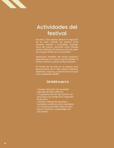 Page 6 of Actividades del festival