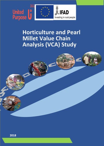 Horticulture and Pearl Millet Value Chain Analysis (VCA
