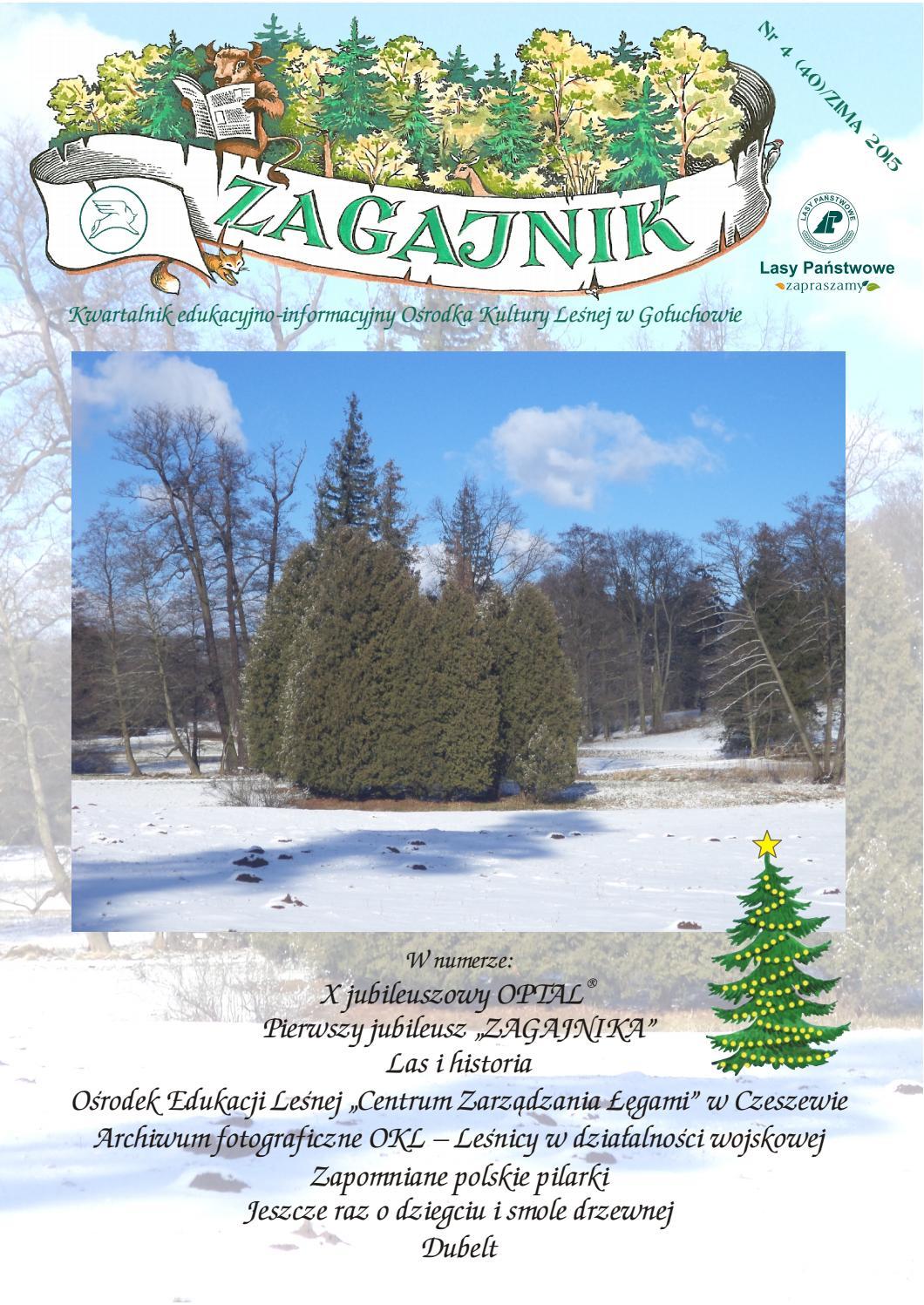 Zagajnik Nr 4 40 Zima 2015 By Ośrodek Kultury Leśnej W