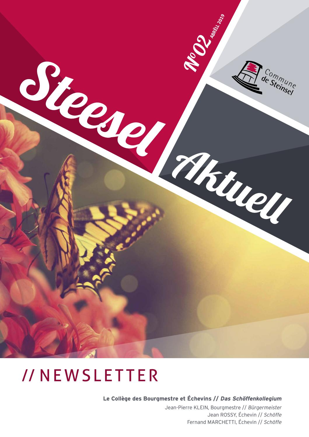 Steesel Aktuell 2 2019 By Ip Luxembourg Issuu