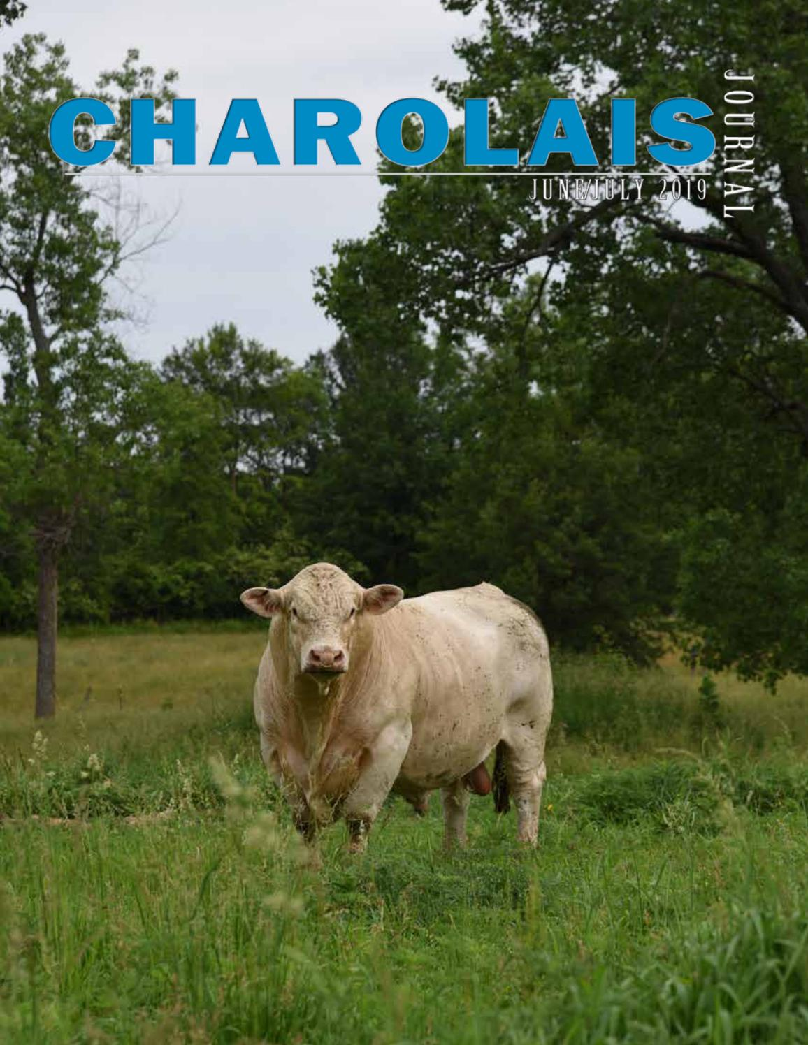 Charolais Journal by EDJE - issuu