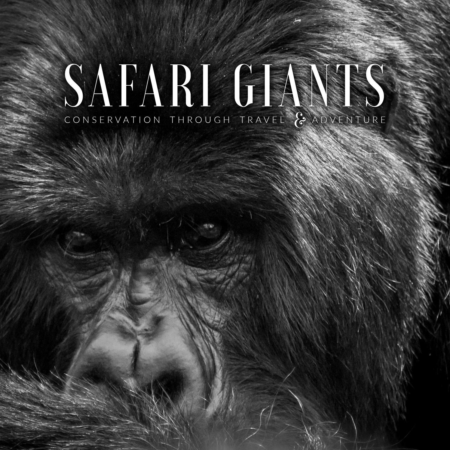 Safari Giants - cover