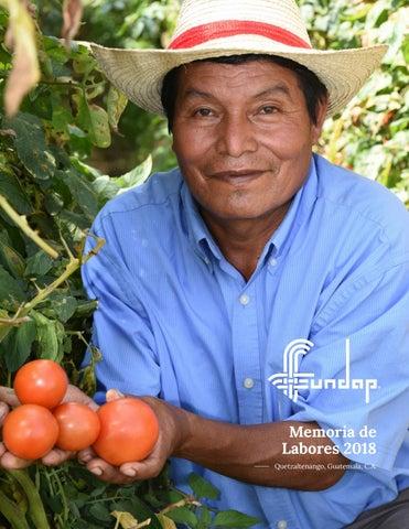 Memoria De Labores 2018 Fundap By Fundap Issuu