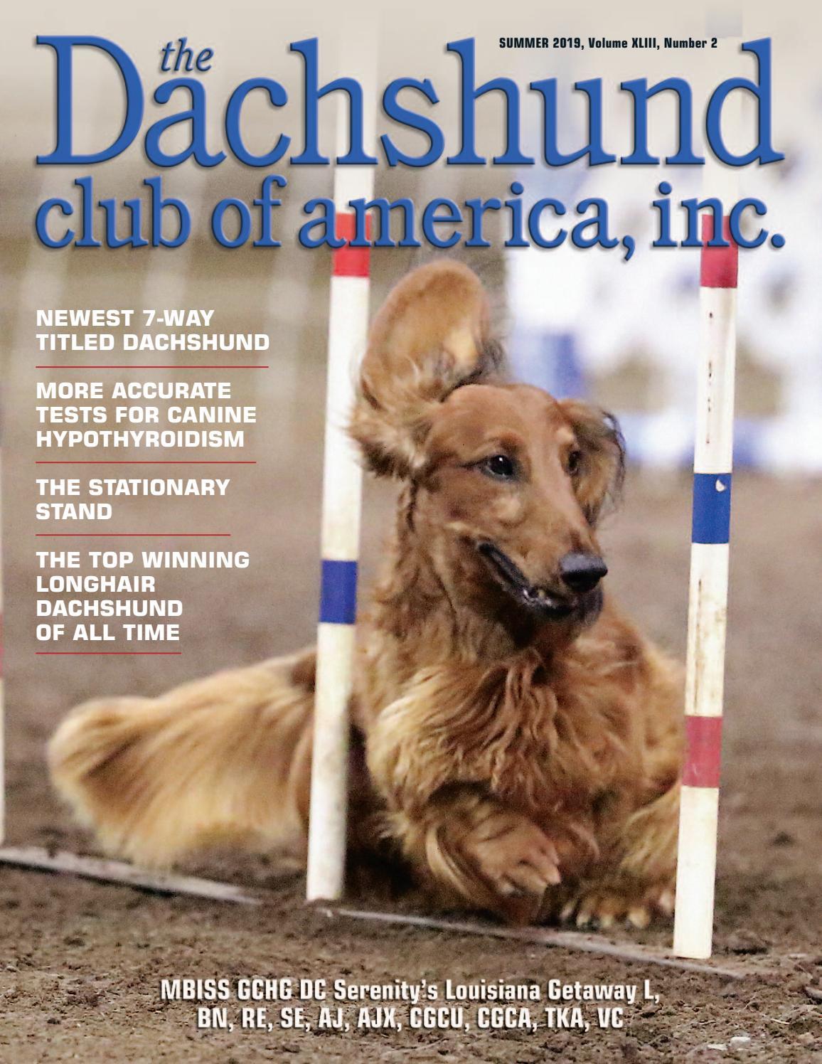 Labrador Retriever Dog Pewter Zipper Pull Mum Dad Vet Christmas Useful Gift NEW