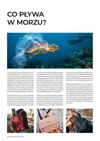 Page 24 of Co pływa w morzu?