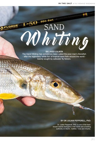 Page 71 of The Sand Whiting