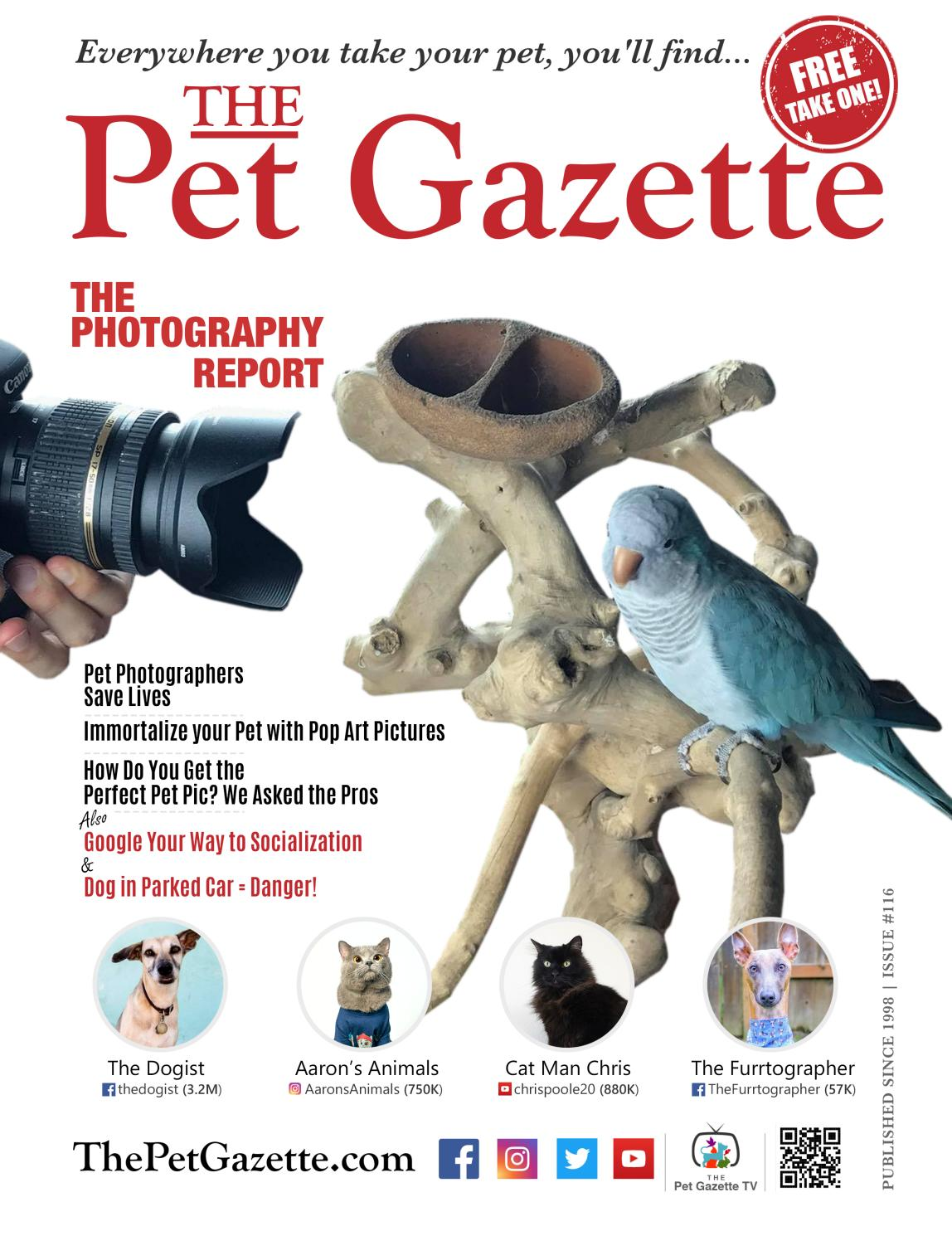 The Pet Gazette National Edition Summer 2018 By Publisher Jason Klatsky Issuu