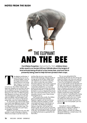Page 28 of The Elephant and the Bee