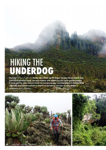 Page 42 of Hiking the Underdog