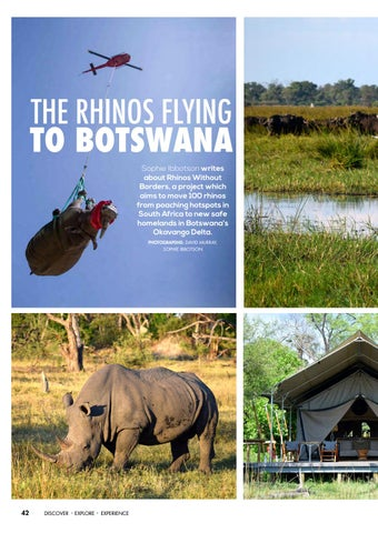 Page 44 of The Rhinos Flying to Botswana