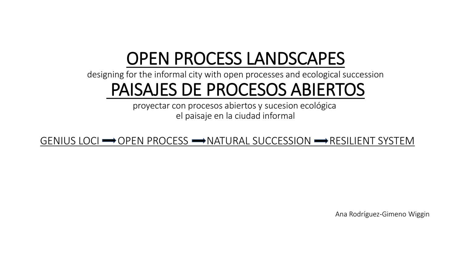 Open process landscapes - Anna Rodriguez Gimeno Wiggin-2017 by