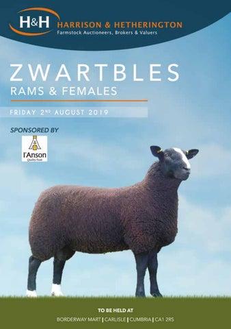 Zwartbles 020819 by Harrison & Hetherington - issuu
