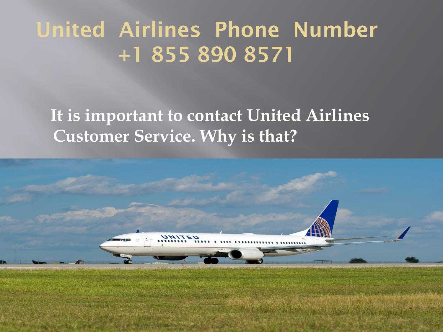 It Is Important To Contact United Airlines Customer Service Why Is That By John Smith Issuu