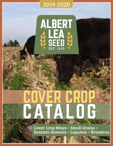 5 lb Bag Piper Sudangrass Seed