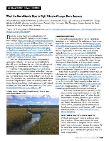 Page 29 of What the World Needs Now to Fight Climate Change: More Swamps