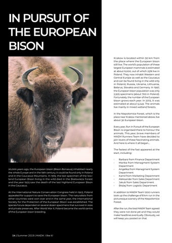 Page 14 of In pursuit of the european bison
