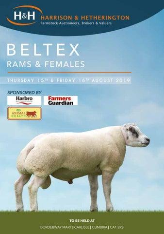 Beltex 15160819 by Harrison & Hetherington - issuu