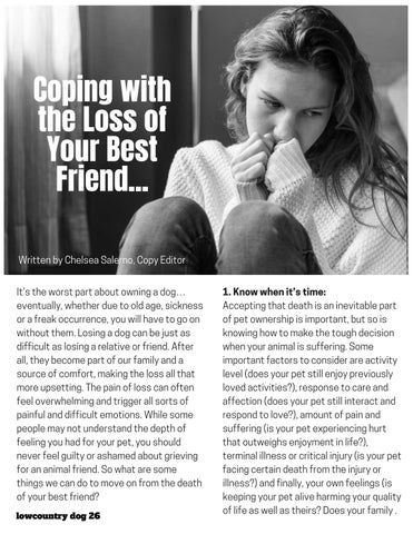 Page 26 of Coping with the Loss of Your Best Friend