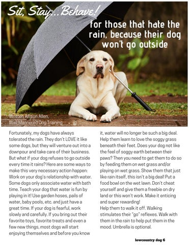 Page 6 of For Those That Hate The Rain, Because Their Dog Won't Go Outside
