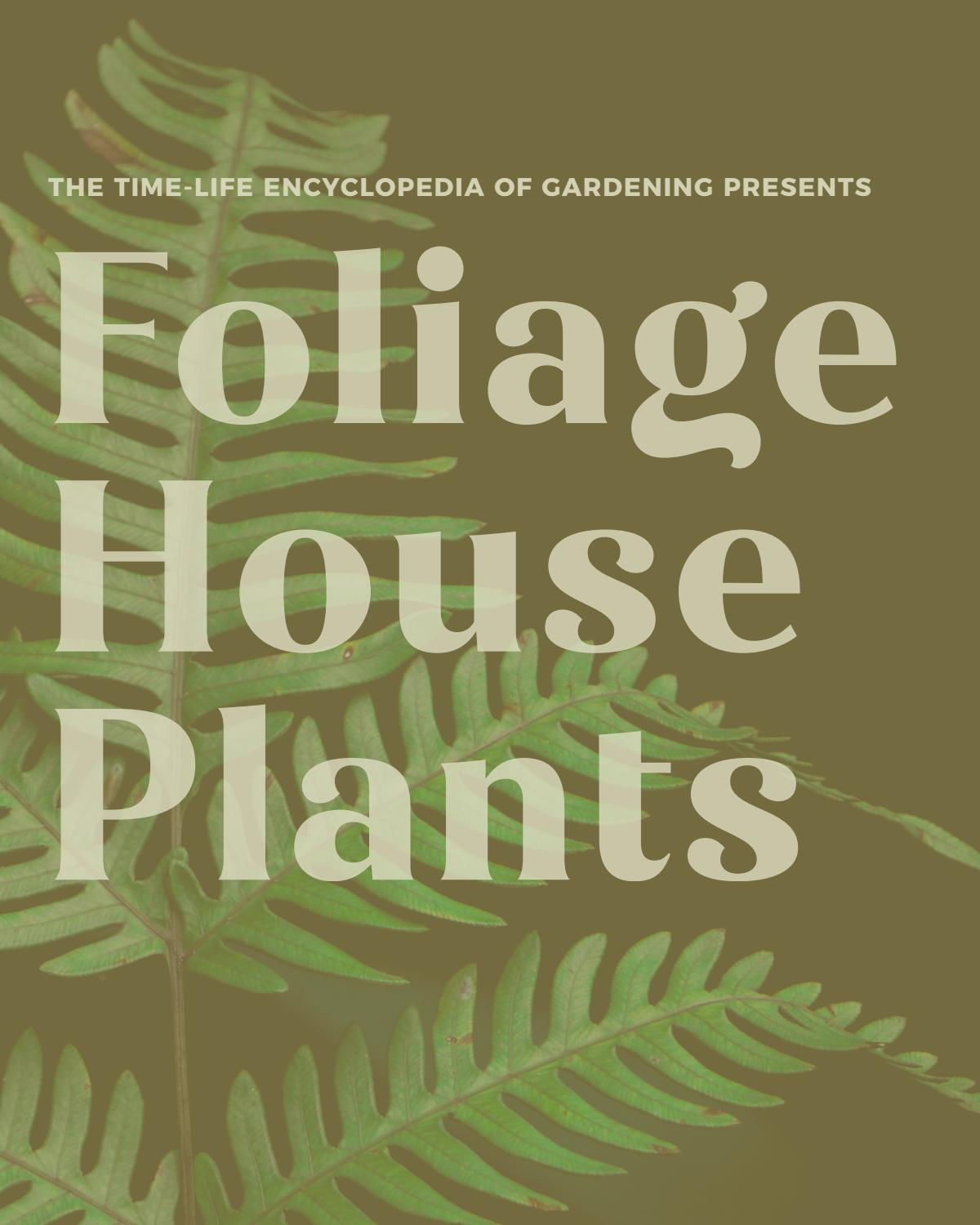Foliage House Plants Time Life Book by Heather Strudgeon - issuu on
