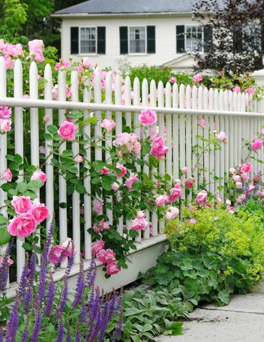 Page 10 of 20 Ways to Add Curb Appeal