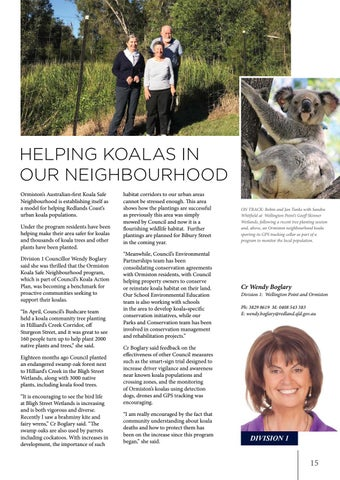 Page 15 of Helping koalas in our neighbourhood