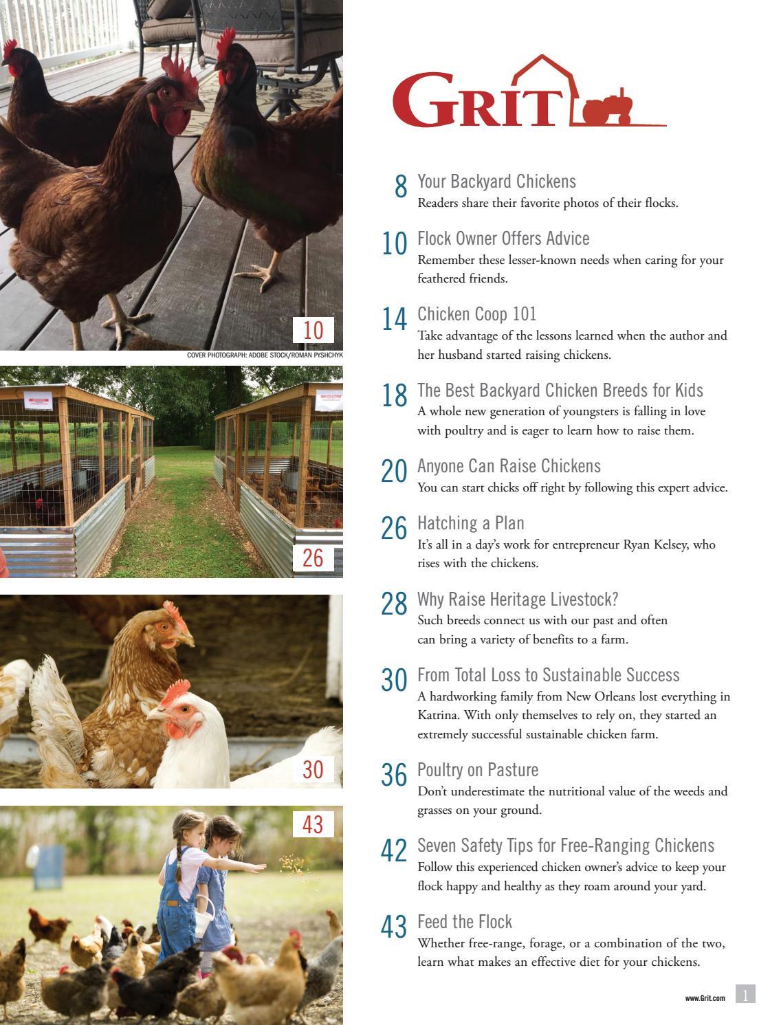 6 Large Breed Chicken HATCHING EGGS BARNYARD MIX Half Dozen FREE RANGE CHICKENS