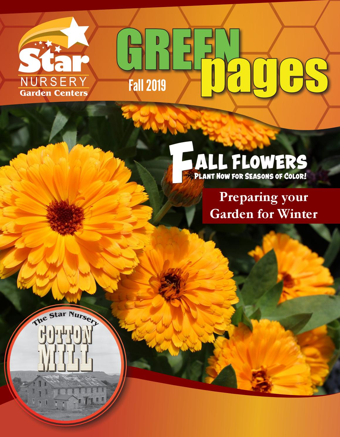 Green Pages Fall 2019 By Star Nursery
