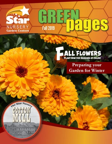Star Nursery S Green Pages Fall 2019 By Issuu
