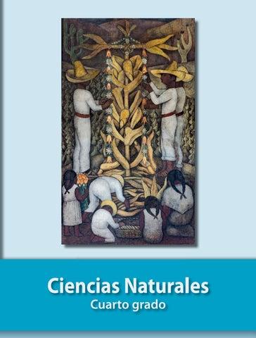 libro ciencias naturales 4to grado pdf