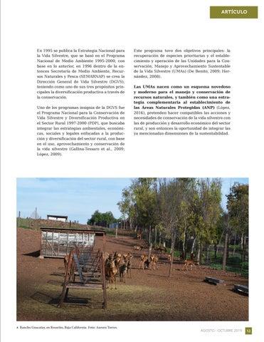 Page 13 of Unidades de manejo para la conservación de la vida silvestre