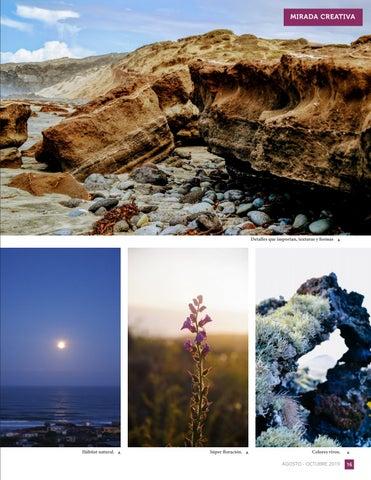 Page 17 of Primera exposición fotográfica del Club Juvenil de Fotógrafos de Naturaleza Huellas Volcánicas