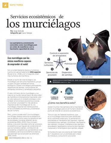 Page 20 of Servicios ecosistémicos de los murciélagos