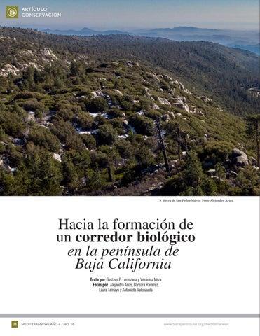 Page 22 of Hacia la formación de un corredor biológico en la península de Baja California