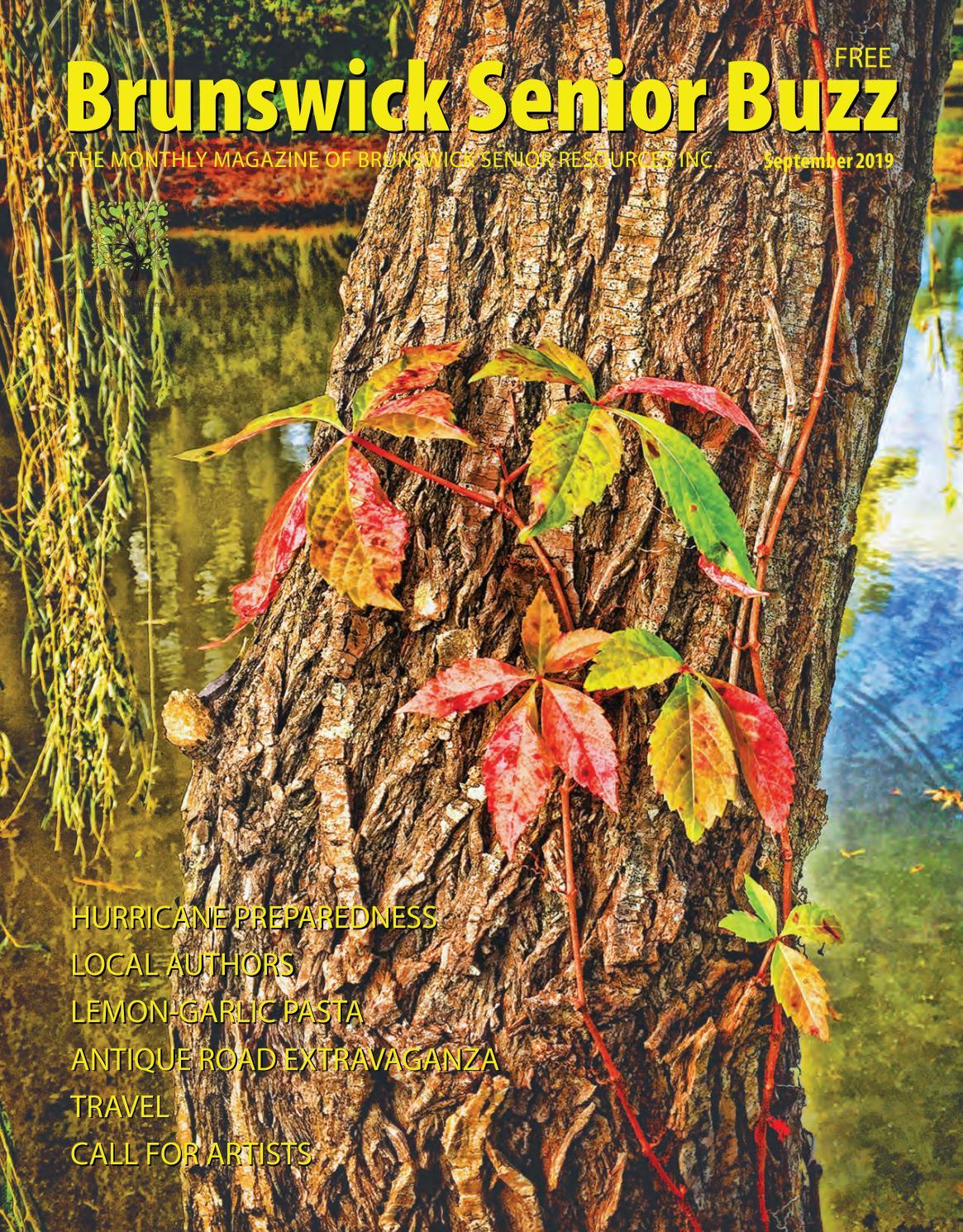 "1 lbs long leaf pines needles coil basket weaving crafts 8/"" 12/"" North Carolina"