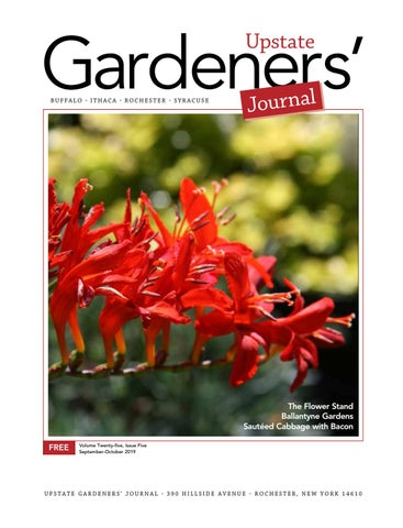 Clarence Center Labor Day Fair 2020.Upstate Gardeners Journal Sept Oct 2019 By Upstate