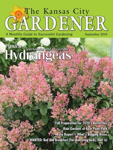 KCG 09Sept19 by The Kansas City Gardener - issuu