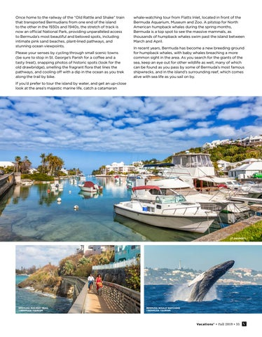 Page 35 of Cave, Cycle, and Catamaran: Explore Bermuda