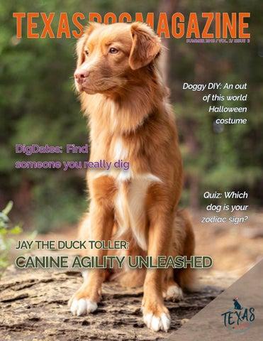 Texas Dog Magazine   Fall 2019 by TexasDogMagazine - issuu