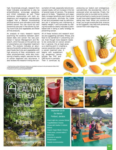 Page 65 of FITNESS + CANNABIS