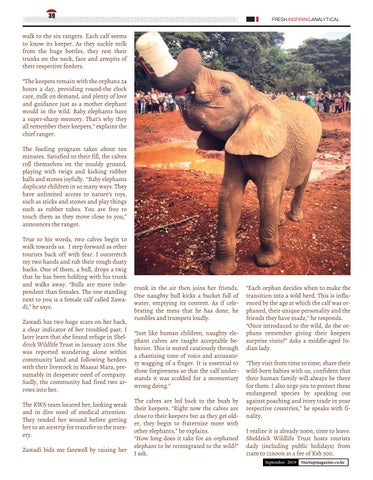 Page 39 of Playing with Orphaned Infant Elephants at the Sheldrick Wildlife Trust