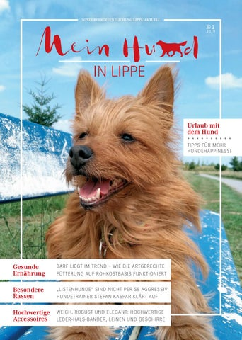 Hund By Aktuell Mein In Lippe Issuu 9IDE2WHY