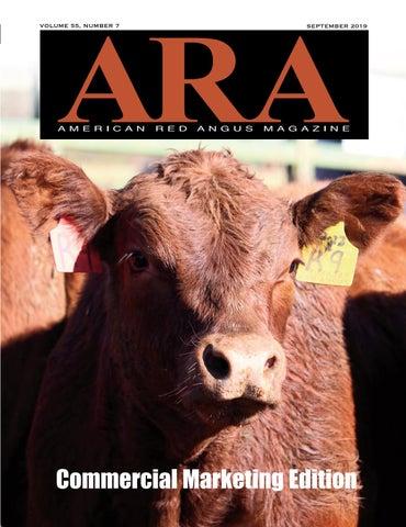 Ara Magazine Red Angus