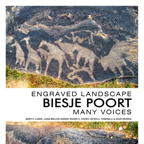 Engraved Landscape Biesje Poort Many Voices By Visual Books Issuu